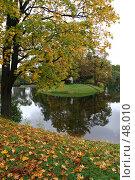 Купить «Санкт-Петербург, Елагин остров», фото № 48010, снято 15 октября 2006 г. (c) Александр Секретарев / Фотобанк Лори