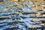 Вода, фон, фото № 48350, снято 23 апреля 2007 г. (c) Argument / Фотобанк Лори