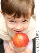 Купить «Красное яблоко у ребенка в руках», фото № 51810, снято 17 мая 2007 г. (c) Останина Екатерина / Фотобанк Лори
