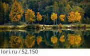 Осеннее настроение. Стоковое фото, фотограф Борис Никитин / Фотобанк Лори