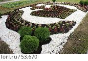 Купить «Дмитров. Клумба в виде короны - герба города», фото № 53670, снято 9 июня 2007 г. (c) Julia Nelson / Фотобанк Лори