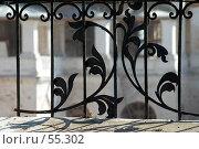 Купить «Фрагмент металлической ограды в Коломенском», фото № 55302, снято 13 апреля 2006 г. (c) Дарья Олеринская / Фотобанк Лори