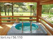 Купить «Бассейн с деревянными поручнями», фото № 56110, снято 29 апреля 2006 г. (c) Михаил Малышев / Фотобанк Лори