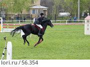 Купить «Соревнования по конкуру», фото № 56354, снято 14 мая 2006 г. (c) Лисовская Наталья / Фотобанк Лори