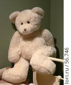 Купить «Медведь Тедди», фото № 56746, снято 16 августа 2005 г. (c) Александр Чермянин / Фотобанк Лори