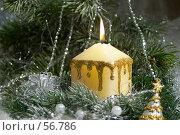 Купить «Новогодняя открытка», фото № 56786, снято 7 мая 2005 г. (c) Николай Туркин / Фотобанк Лори