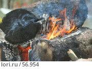 Купить «Костёр. Горящие брёвна.», фото № 56954, снято 1 июля 2007 г. (c) Захаров Владимир / Фотобанк Лори