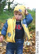 Купить «Мальчик осенью», фото № 57586, снято 27 сентября 2005 г. (c) Останина Екатерина / Фотобанк Лори