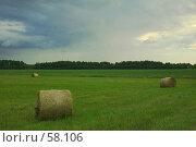Купить «Тюки сена на скошенном поле перед дождем», фото № 58106, снято 23 января 2018 г. (c) Игорь Соколов / Фотобанк Лори