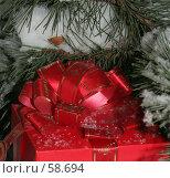 Купить «Подарок», фото № 58694, снято 30 ноября 2006 г. (c) Vdovina Elena / Фотобанк Лори