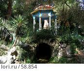 Купить «Никитский ботанический сад», фото № 58854, снято 6 сентября 2006 г. (c) Елена Руденко / Фотобанк Лори