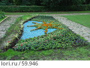Купить «Клумба», фото № 59946, снято 5 июля 2007 г. (c) Дмитрий Карасев / Фотобанк Лори