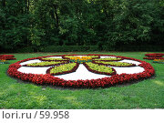Купить «Клумба», фото № 59958, снято 5 июля 2007 г. (c) Дмитрий Карасев / Фотобанк Лори