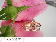 Купить «Нежная розовая роза и два обручальных кольца», фото № 60214, снято 19 февраля 2007 г. (c) Останина Екатерина / Фотобанк Лори