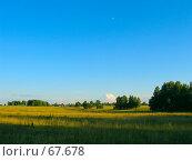 Русское поле на закате. Стоковое фото, фотограф Дмитрий Гришин / Фотобанк Лори