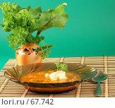 Тарелка с борщом и букет из листьев. Стоковое фото, фотограф Елена Блохина / Фотобанк Лори