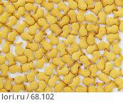 Купить «Золотые рыбки», фото № 68102, снято 12 июля 2007 г. (c) Angelina Ashukina / Фотобанк Лори