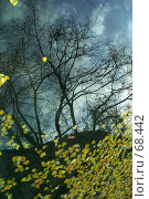 Купить «Отражения осени», фото № 68442, снято 23 сентября 2018 г. (c) Морозова Татьяна / Фотобанк Лори