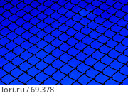 Купить «Железная сетка», фото № 69378, снято 31 июля 2007 г. (c) Анатолий Теребенин / Фотобанк Лори