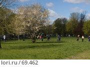 Купить «Люди собирают мусор и прошлогодние листья в парке», фото № 69462, снято 21 апреля 2007 г. (c) Дмитрий Доможиров / Фотобанк Лори