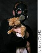 Купить «Рыжий кот», фото № 70242, снято 15 июня 2007 г. (c) Морозова Татьяна / Фотобанк Лори