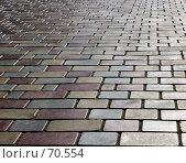 Купить «Тротуар. Плиточный дорожный паттерн», эксклюзивное фото № 70554, снято 8 июля 2007 г. (c) Татьяна Белова / Фотобанк Лори