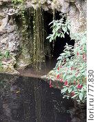 Купить «Грот», эксклюзивное фото № 77830, снято 29 июля 2007 г. (c) Михаил Карташов / Фотобанк Лори