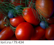 Купить «Сеньоры-помидоры», фото № 79434, снято 27 августа 2007 г. (c) Таня Нотта / Фотобанк Лори