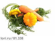 Купить «Морковь и Патиссоны», фото № 81338, снято 2 сентября 2007 г. (c) Анатолий Теребенин / Фотобанк Лори