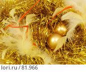 Купить «Золотые шары», фото № 81966, снято 3 сентября 2007 г. (c) Angelina Ashukina / Фотобанк Лори