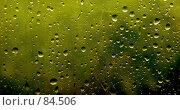 Купить «Осенний мотив. (Autumn motive.)», фото № 84506, снято 6 июля 2007 г. (c) Анатолий Теребенин / Фотобанк Лори