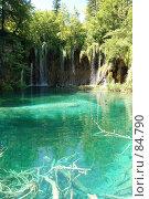 Купить «Плитвицкие озера, Хорватия, водопады», фото № 84790, снято 15 июля 2007 г. (c) Golden_Tulip / Фотобанк Лори