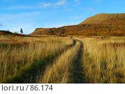 Купить «Дорога через поле», фото № 86174, снято 21 сентября 2018 г. (c) Валерий Александрович / Фотобанк Лори
