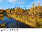 Купить «Переправа через ручей», фото № 87134, снято 21 сентября 2018 г. (c) Валерий Александрович / Фотобанк Лори