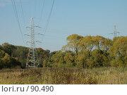 Купить «ЛЭП на фоне леса», фото № 90490, снято 13 августа 2005 г. (c) Куликова Татьяна / Фотобанк Лори