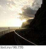 Купить «Мадейра», эксклюзивное фото № 90770, снято 13 декабря 2018 г. (c) Михаил Карташов / Фотобанк Лори