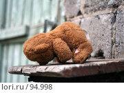 Купить «Мишку бросила хозяйка», фото № 94998, снято 18 августа 2007 г. (c) Екатерина Соловьева / Фотобанк Лори
