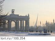Купить «Зимний пейзаж на ВВЦ. Морозный короткий зимний день...», фото № 100354, снято 25 ноября 2004 г. (c) Harry / Фотобанк Лори