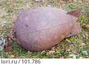 Купить «Глубинная бомба», фото № 101786, снято 23 сентября 2007 г. (c) Мирзоянц Андрей / Фотобанк Лори