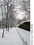 Купить «Неожиданное начало зимы во Владивостоке», фото № 102754, снято 14 августа 2018 г. (c) TigerFox / Фотобанк Лори