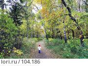 Купить «По волшебной тропинке детства...», фото № 104186, снято 22 апреля 2018 г. (c) Круглов Олег / Фотобанк Лори