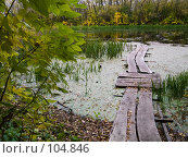 Купить «Деревянный мосток на лесном озере», фото № 104846, снято 15 декабря 2017 г. (c) Борис Панасюк / Фотобанк Лори