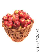 Купить «Много красных яблок лежат в корзине на белом фоне», фото № 105474, снято 10 октября 2007 г. (c) Останина Екатерина / Фотобанк Лори