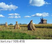 Купить «Кижи, мельница 2», фото № 109418, снято 19 августа 2007 г. (c) Ярослава Синицына / Фотобанк Лори