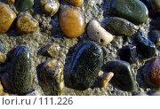 Купить «Каменная стена», фото № 111226, снято 18 октября 2006 г. (c) Арестов Андрей Павлович / Фотобанк Лори