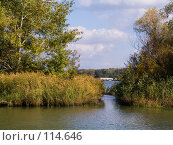 Купить «Маленькая протока, впадающая в Дон», фото № 114646, снято 10 сентября 2006 г. (c) Борис Панасюк / Фотобанк Лори