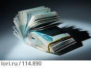 Купить «Пачка денег: теневые доходы», фото № 114890, снято 12 сентября 2007 г. (c) Ирина Мойсеева / Фотобанк Лори