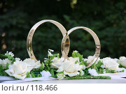 Купить «Свадебные кольца», фото № 118466, снято 6 августа 2005 г. (c) Efanov Aleksey / Фотобанк Лори
