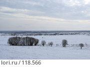 Купить «Белое безмолвие», фото № 118566, снято 25 марта 2006 г. (c) Александр Галуцкий / Фотобанк Лори