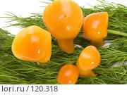 Купить «Грибы на траве», фото № 120318, снято 17 ноября 2007 г. (c) Угоренков Александр / Фотобанк Лори